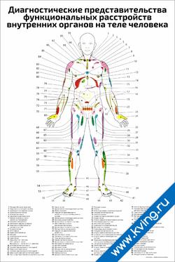 Плакат диагностические представительства функциональных расстройств внутренних органов на теле человека
