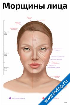 Плакат морщины лица