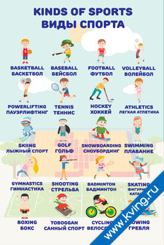 Плакат виды спорта